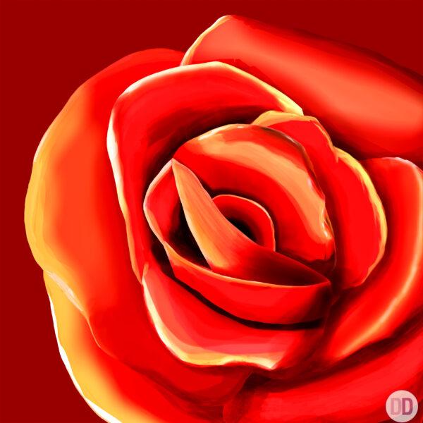 rosa rossa quadro