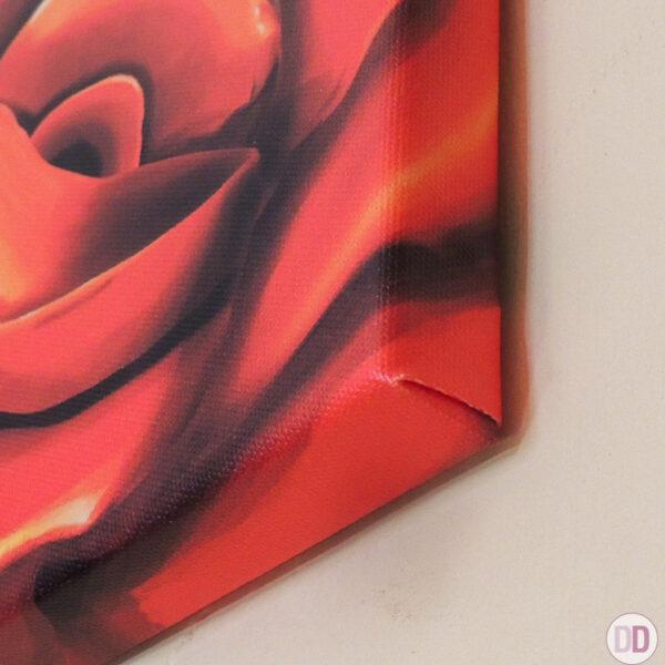 rosa rossa quadro angolo