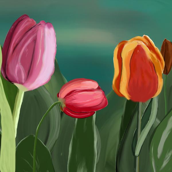quadro tulipano particolare 1
