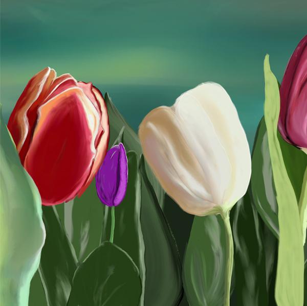 quadro tulipano particolare 2